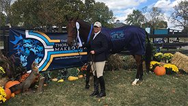 New Start Alumni Open Ice Hit at the Thoroughbred Makeover